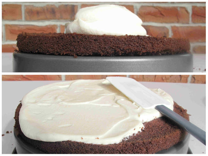 Frosting chocolate-coconut cake