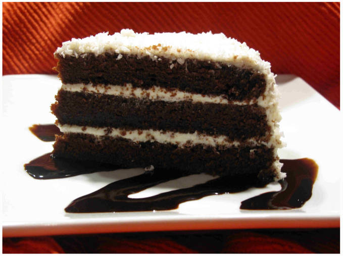 A slice of chocolate-coconut cake