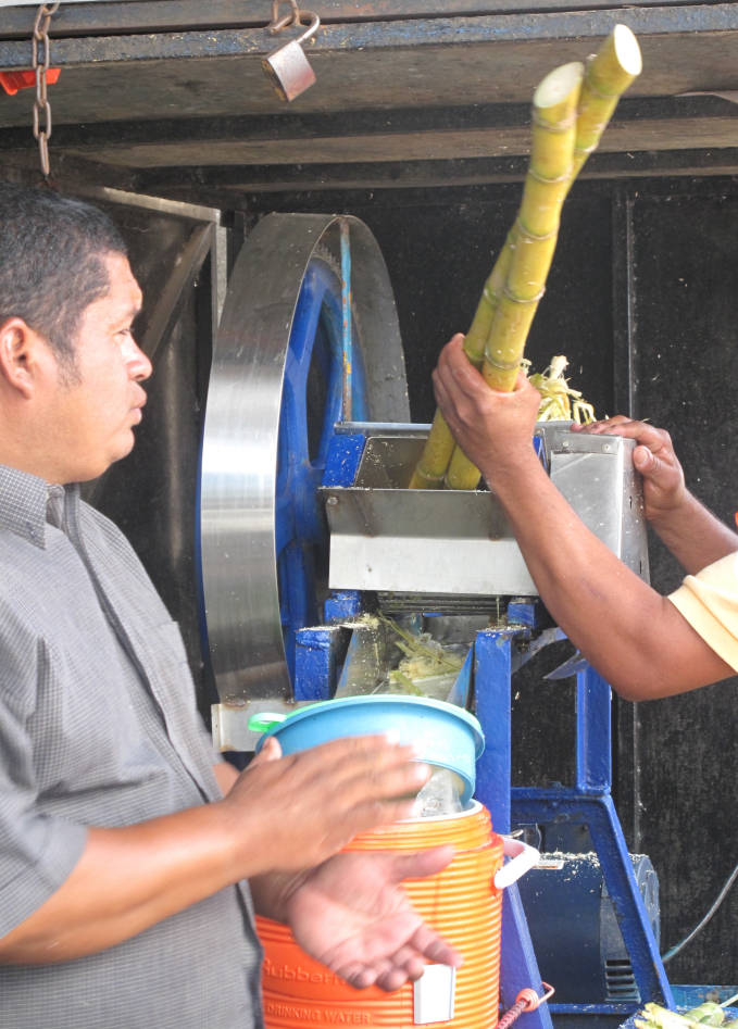 Sugar cane juice being squeezed