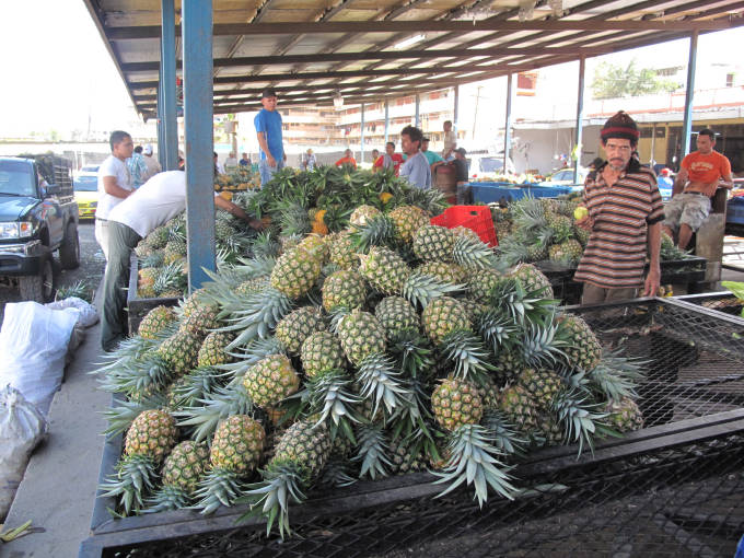 Pineapples at the Panama fruit market