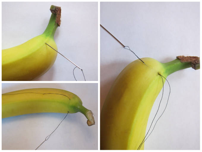 Sewing a banana to pre-slice it