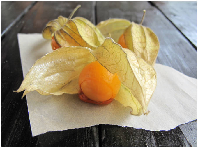 Physalis dipped in caramel