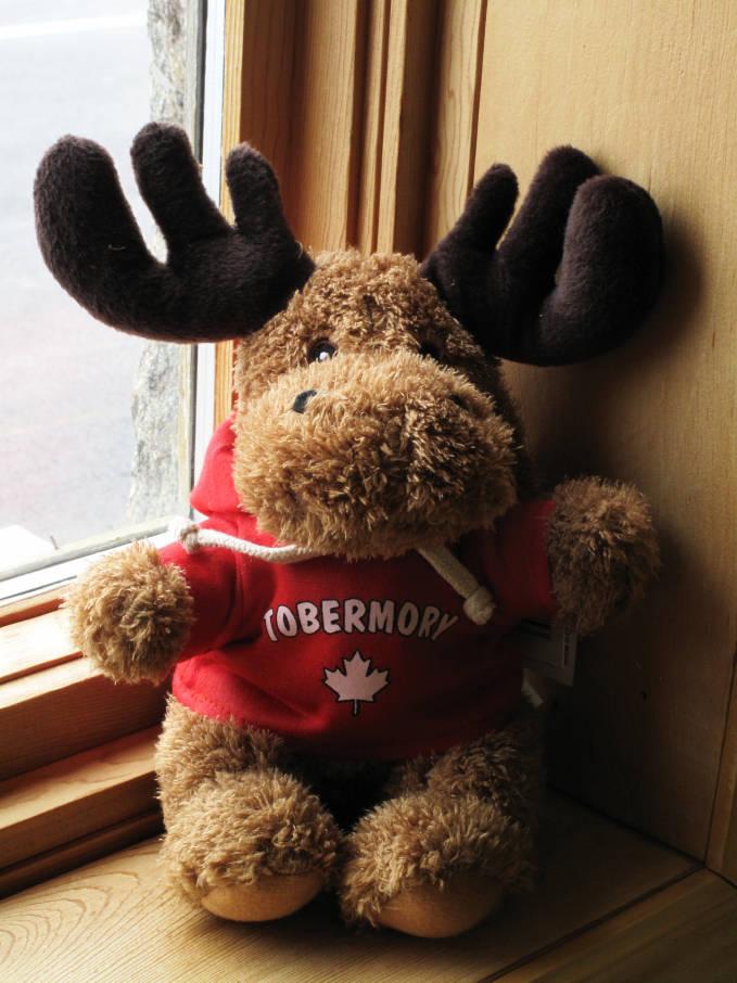 Tobermory souvenir moose