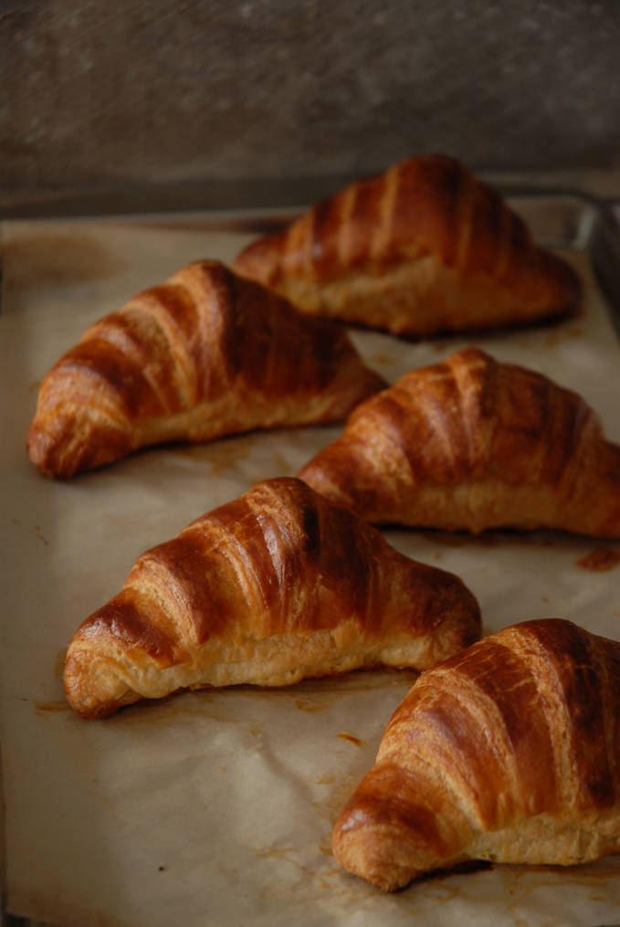 Homemade French croissants on a baking sheet. Click to see the full photo tutorial and recipe!