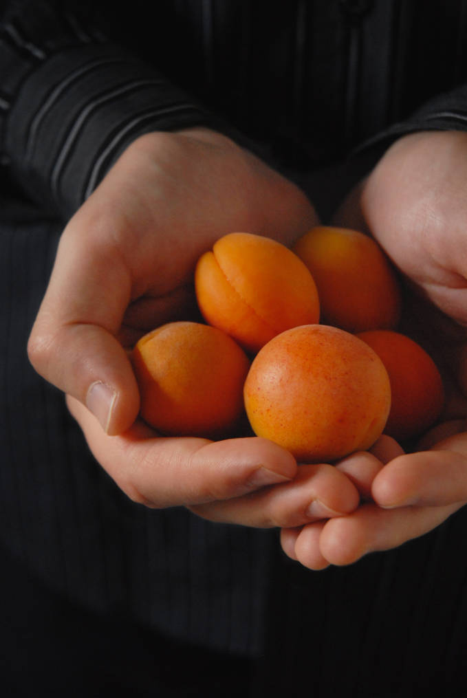 Handful of apricots. Pretty, right? Well, you'll have to click to find out what I did with 'em...